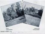 zřícenina hradu Šelmberk 1910